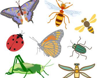 Bug clipart mite. Bugs etsy clip art