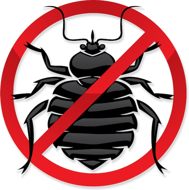 Bed photos images pics. Bug clipart mite