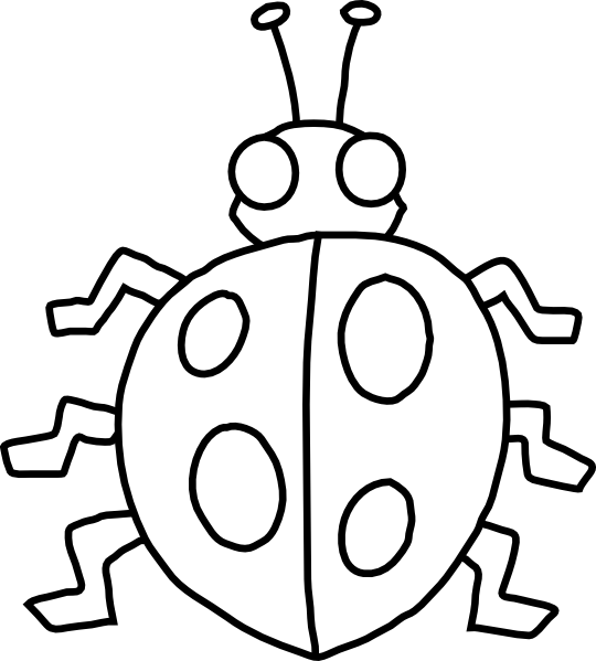 Bug outline . Library clipart drawing