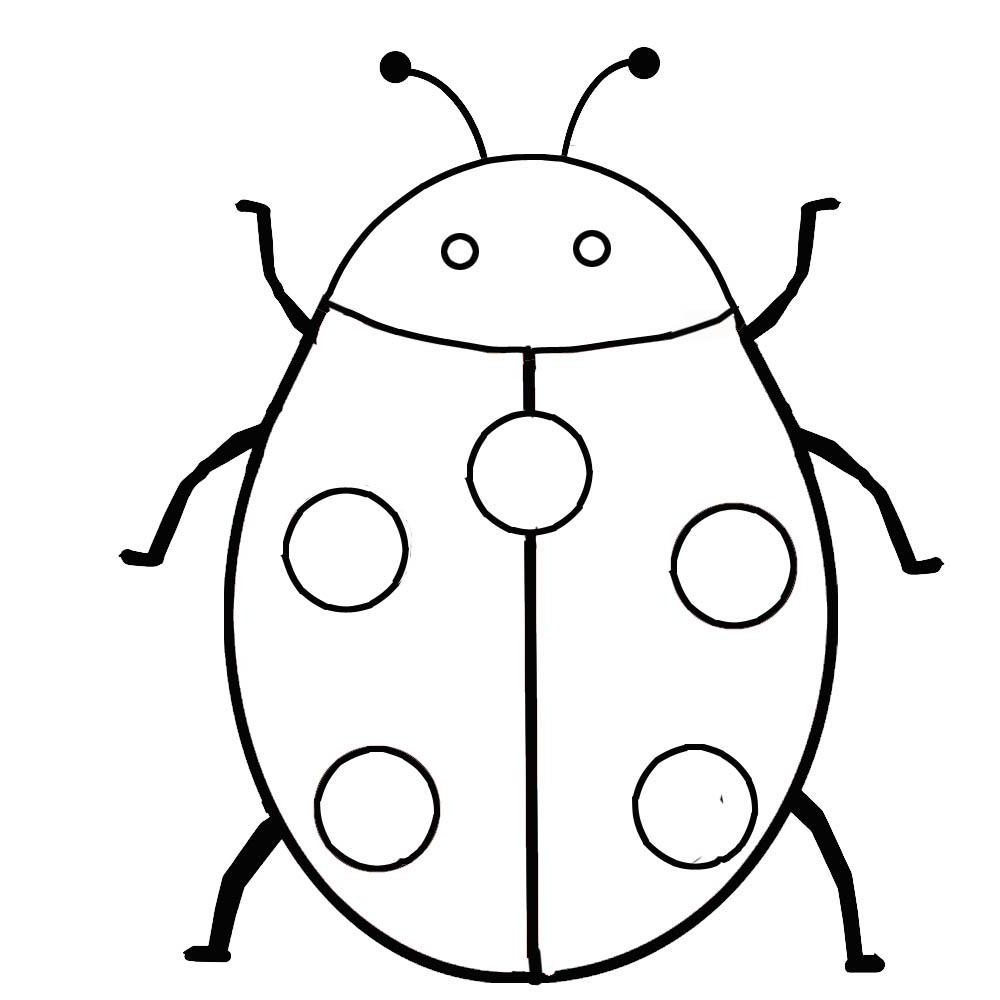 Bug clipart printable. Free pictures of insects