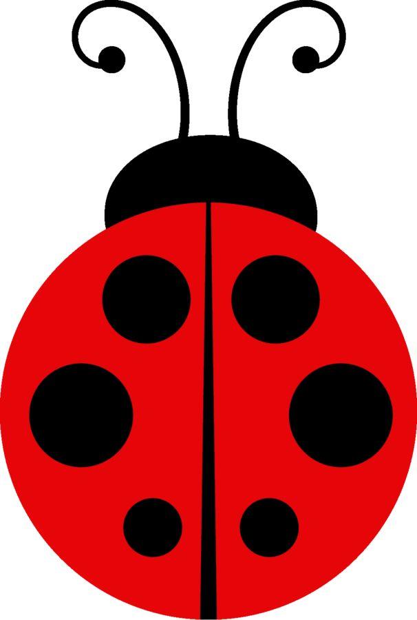 Ladybug clipart spring.  best joaninha images