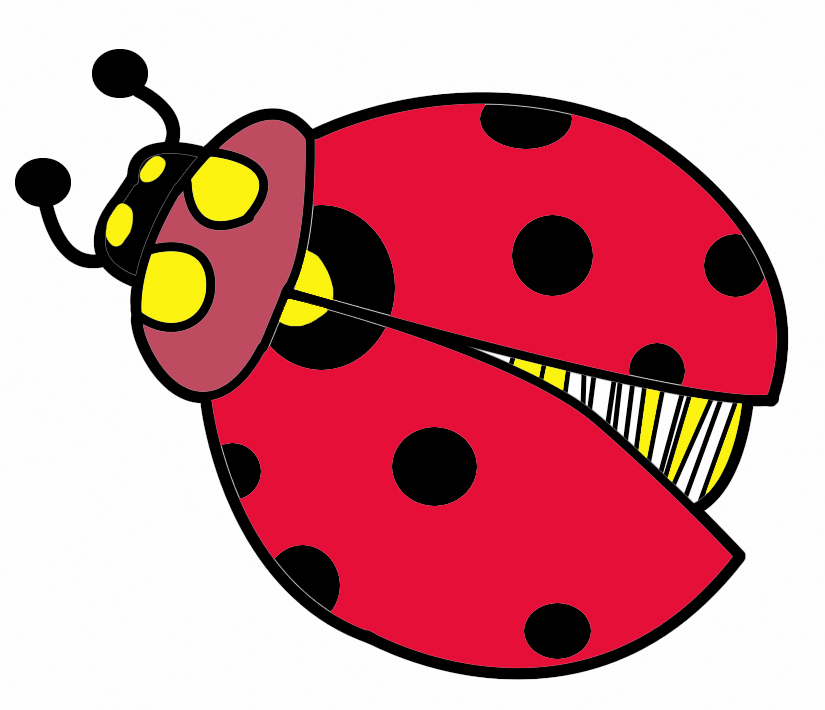 Insect clipart thumbi. Free bug download clip