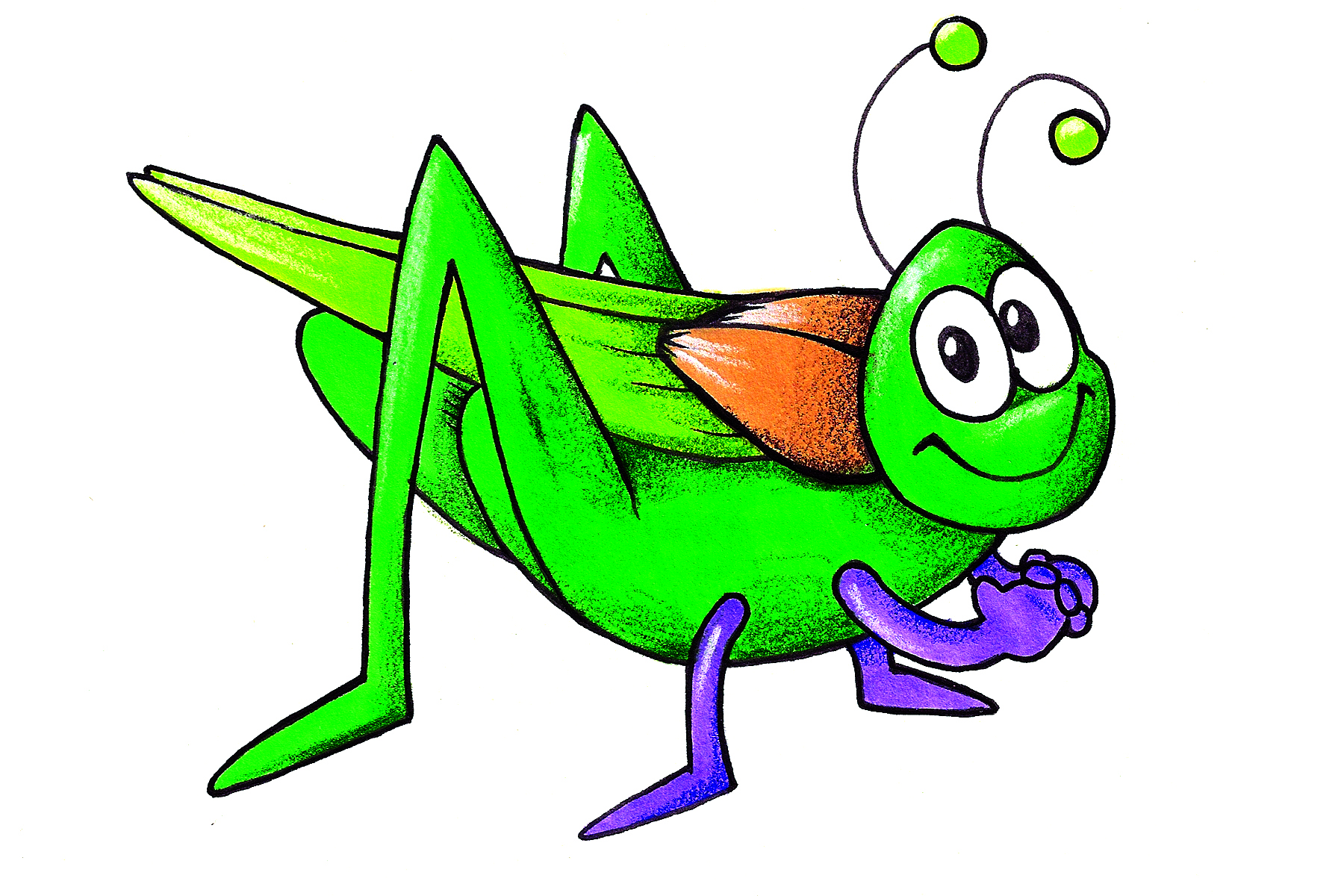 Circle of stars cricket. Insects clipart green insect