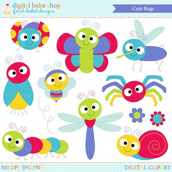 Insects ladybug lady bug. Bugs clipart clip art