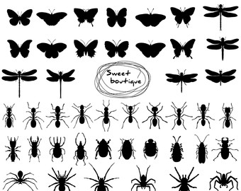 Bug clipart silhouette. Ant etsy digital spider