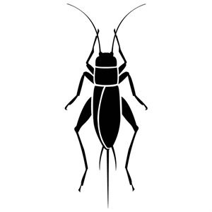 Cricket insect panda free. Bug clipart silhouette