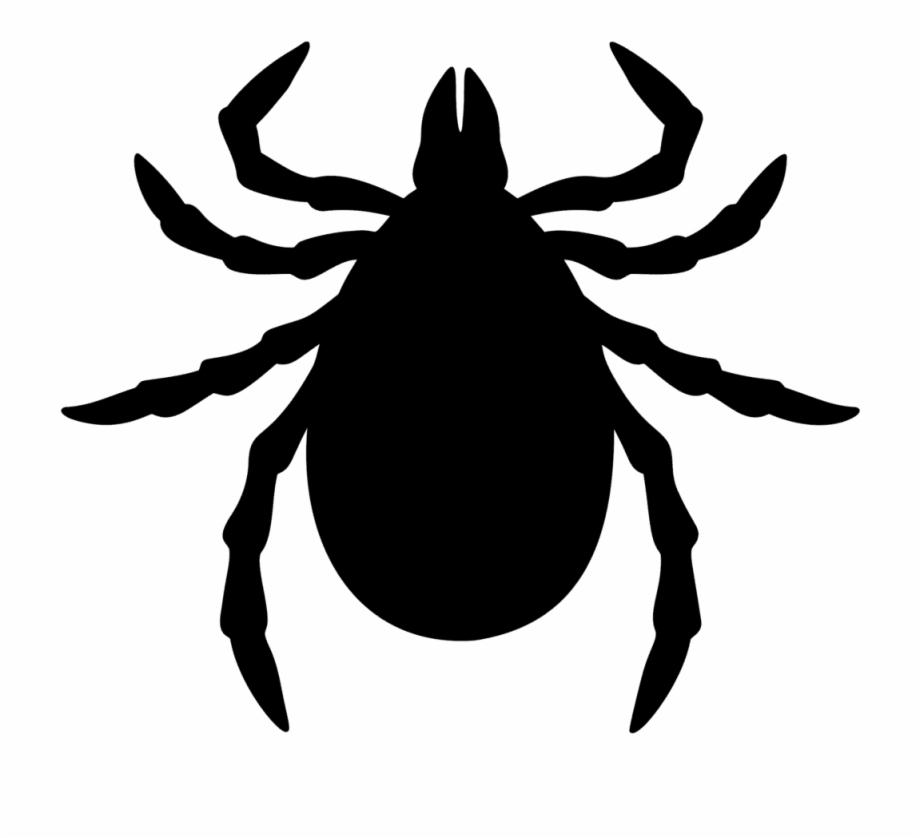Fleas ticks cartoon clip. Bug clipart tick