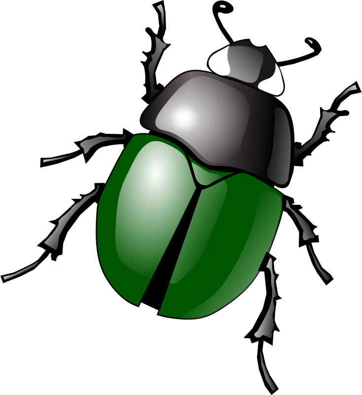 Stylized green medium image. Insects clipart water beetle