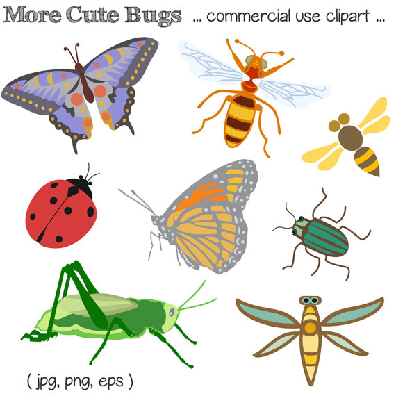 Insects clipart. Bug clip art insect