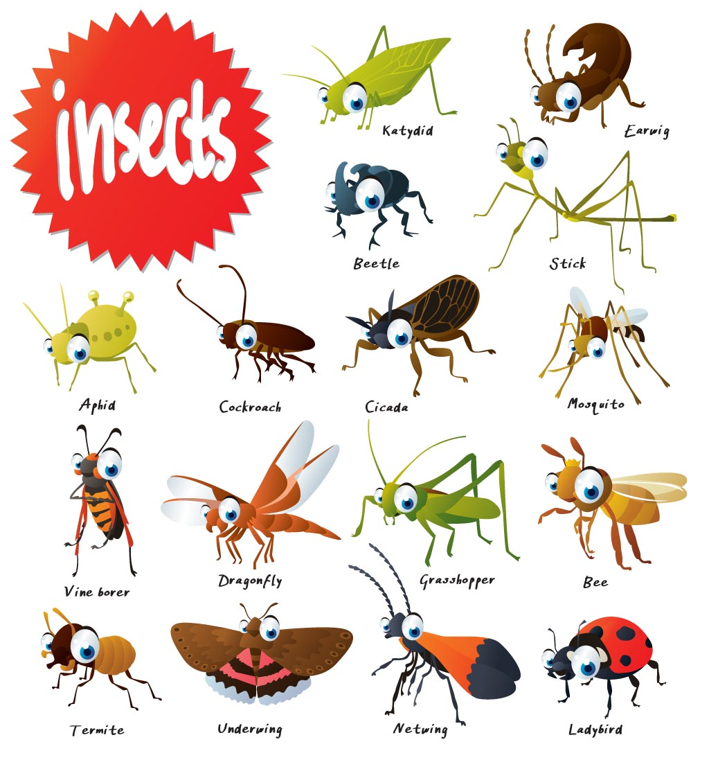 The wonderful world of. Bugs clipart aphid