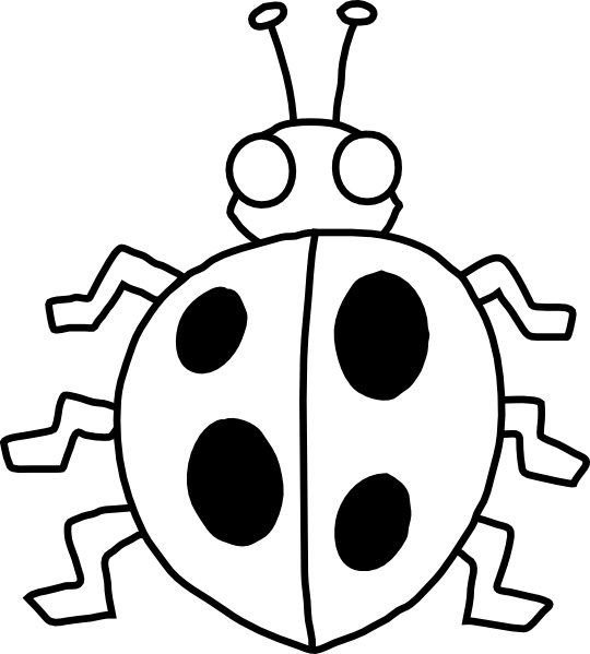 Insect black and white. Ladybugs clipart drawing