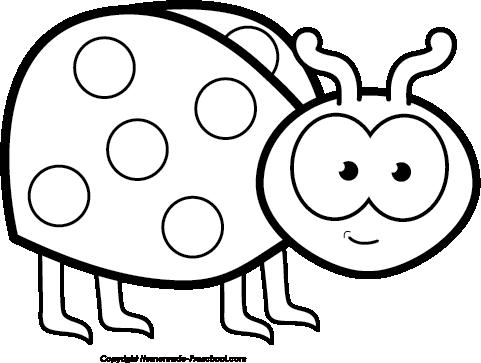 Free bug cliparts black. Ladybug clipart outline