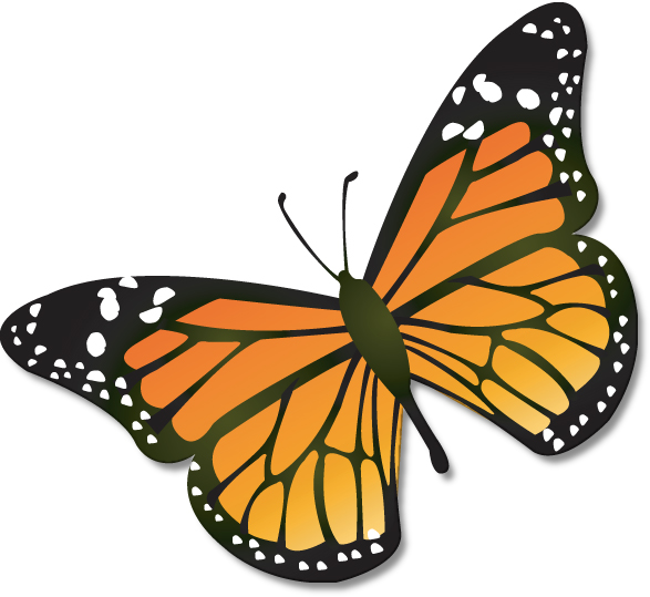 Bugs clipart butterfly. Clip art free download