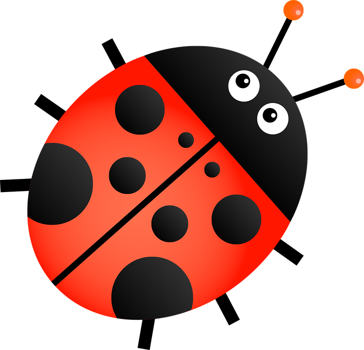 Ladybug clipart transparent background. Red png mart