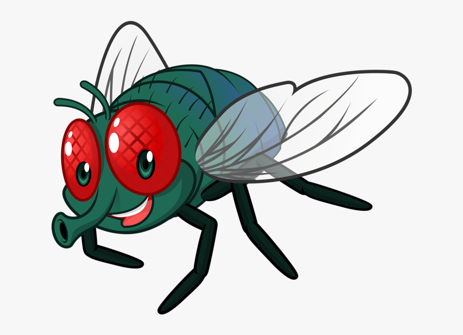 Flies clipart bug. Cartoon fly clip art