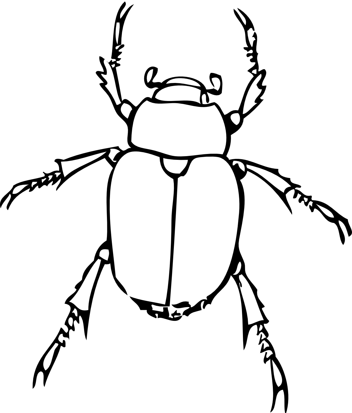 Einstein clipart sketch. Bug line drawing drawings
