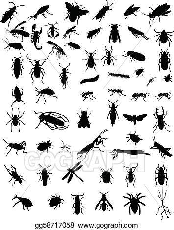 Insect clipart realistic. Vector art collection of