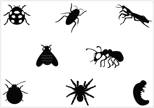Bug clipart silhouette. Free bugs flying cliparts