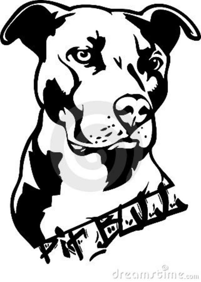 Bull clipart bull face. Pitbull clip art