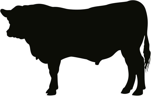 Bull clipart silhouette. Red angus