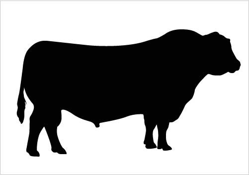 Bull clipart silhouette. Vector quality download