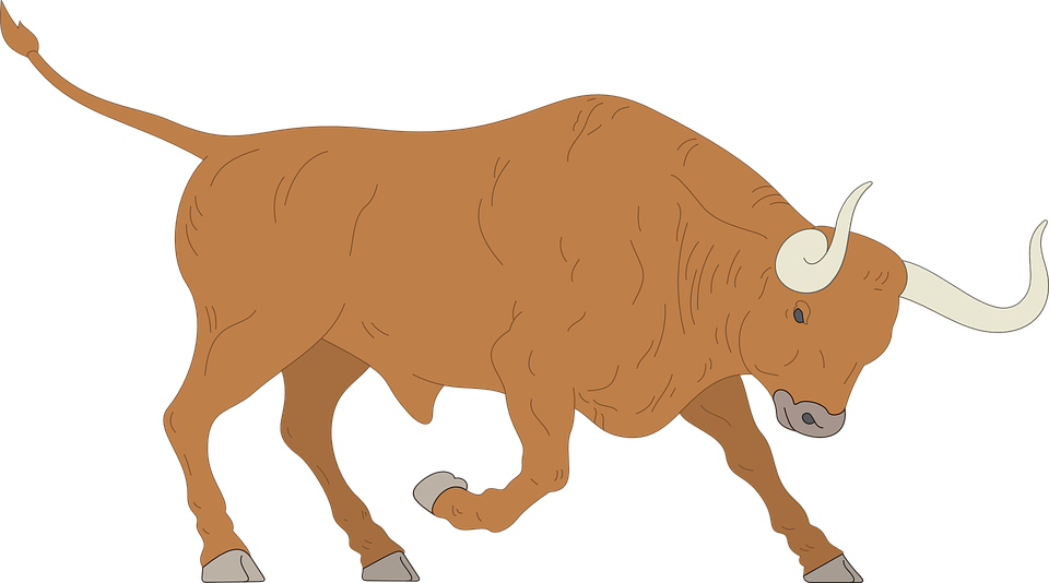 Indian clipground free vector. Ox clipart mad bull