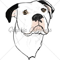 Bulldog clipart american bulldog. Pin by coloring fun
