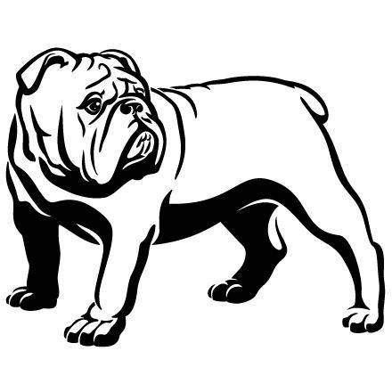English mascot head spiked. Bulldog clipart american bulldog