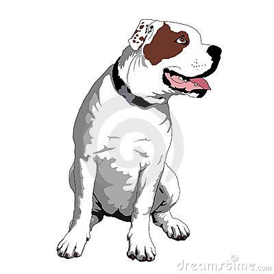 Free cliparts download clip. Bulldog clipart american bulldog