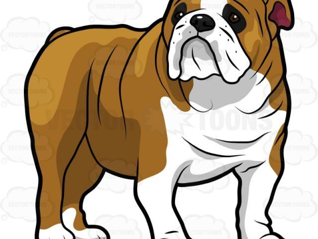 Bulldog clipart animated. English free on dumielauxepices
