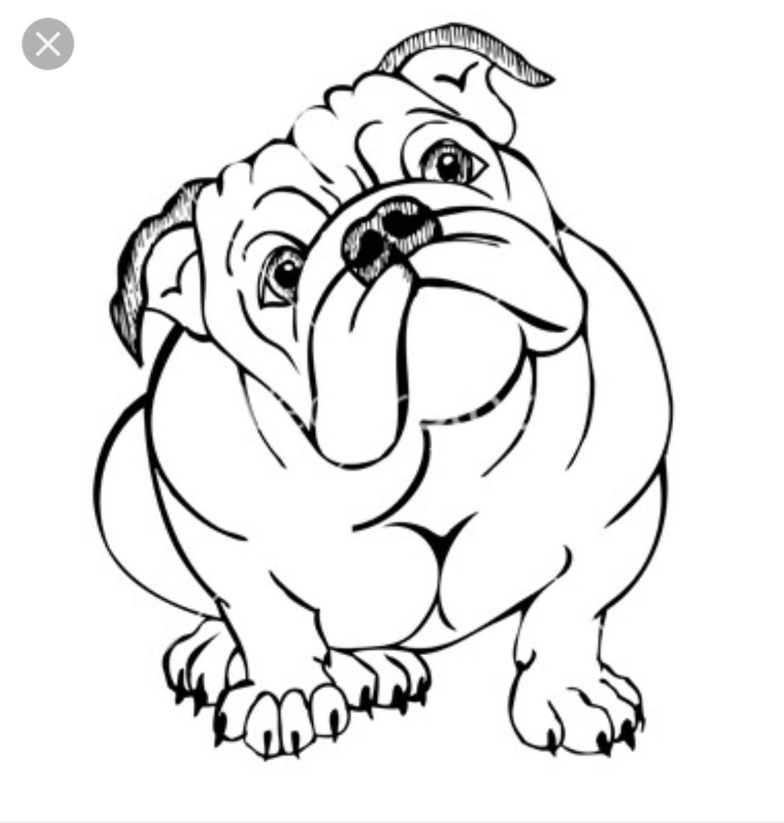 Pin by kim schutt. Bulldog clipart baby bulldog
