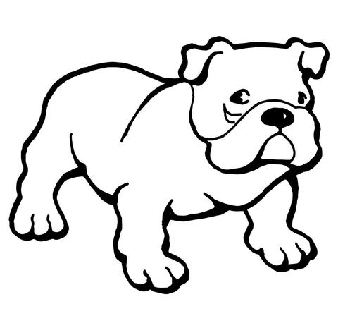 Bulldog clipart coloring page. Free printable pages