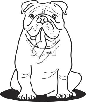 Royalty free image of. Bulldog clipart coloring page