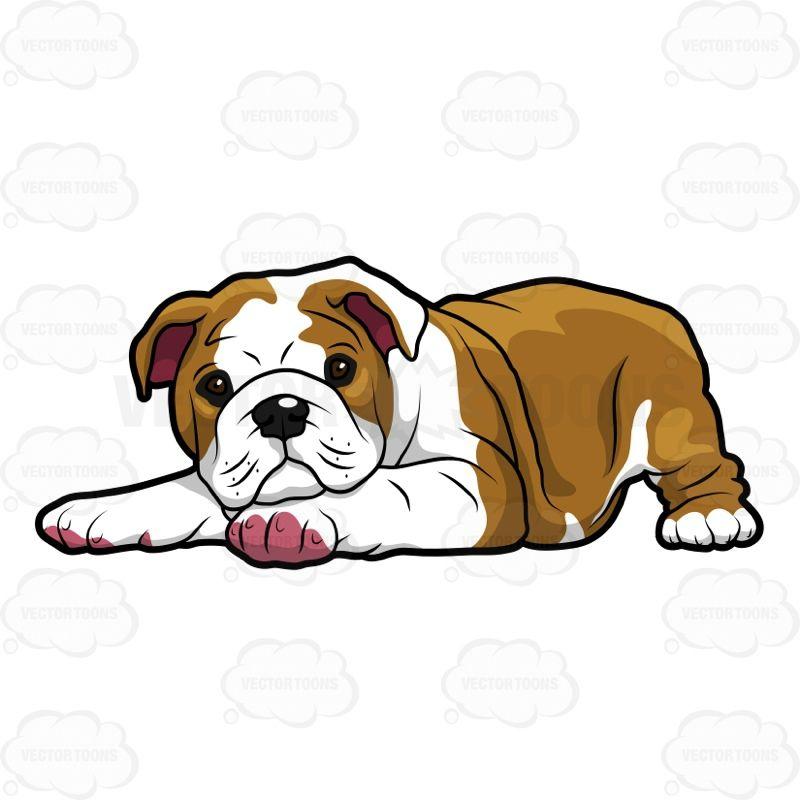 Bulldog clipart english bulldog. Concept design home cute