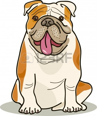 Bulldog clipart english bulldog.  clipartlook
