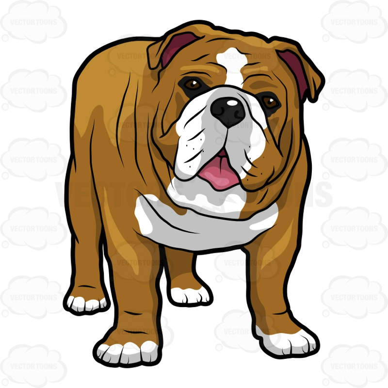Free download best . Bulldog clipart english bulldog