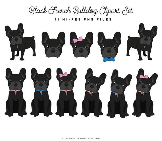 Bulldog clipart french bulldog. Files set black puppy