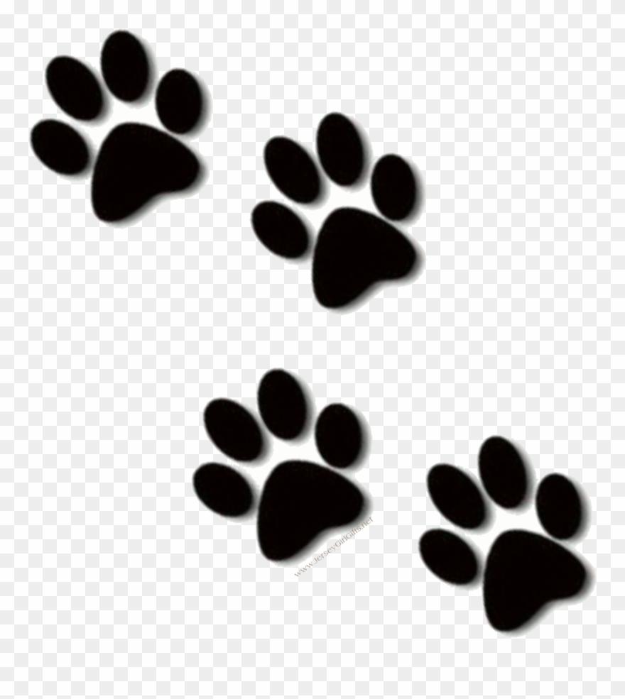 Bulldog print clip art. Paw clipart bull dog