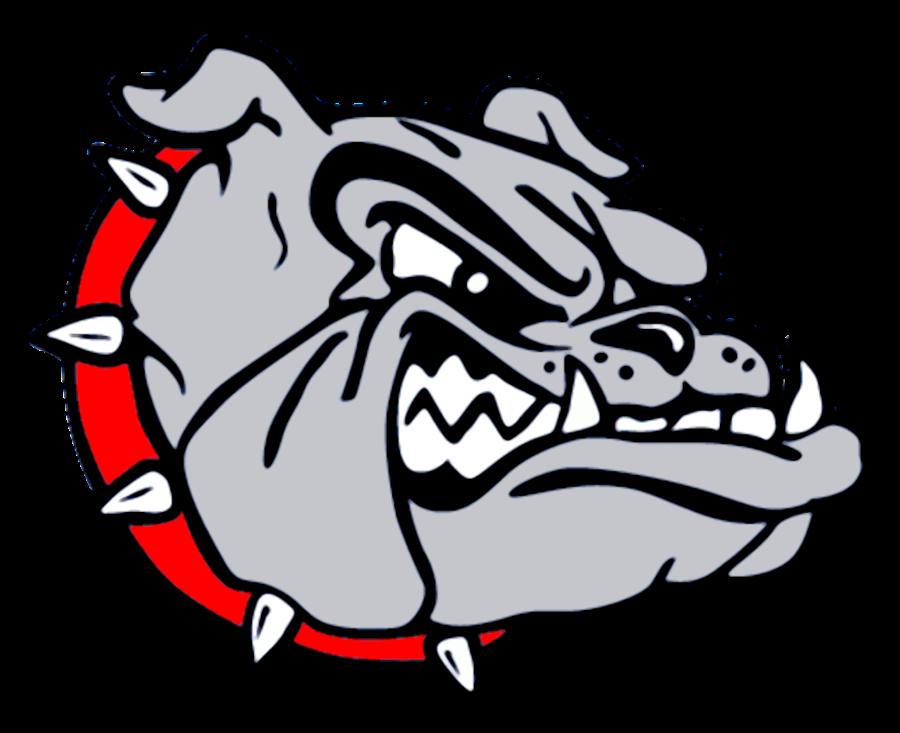 collection of bulldog. Falcon clipart mascot