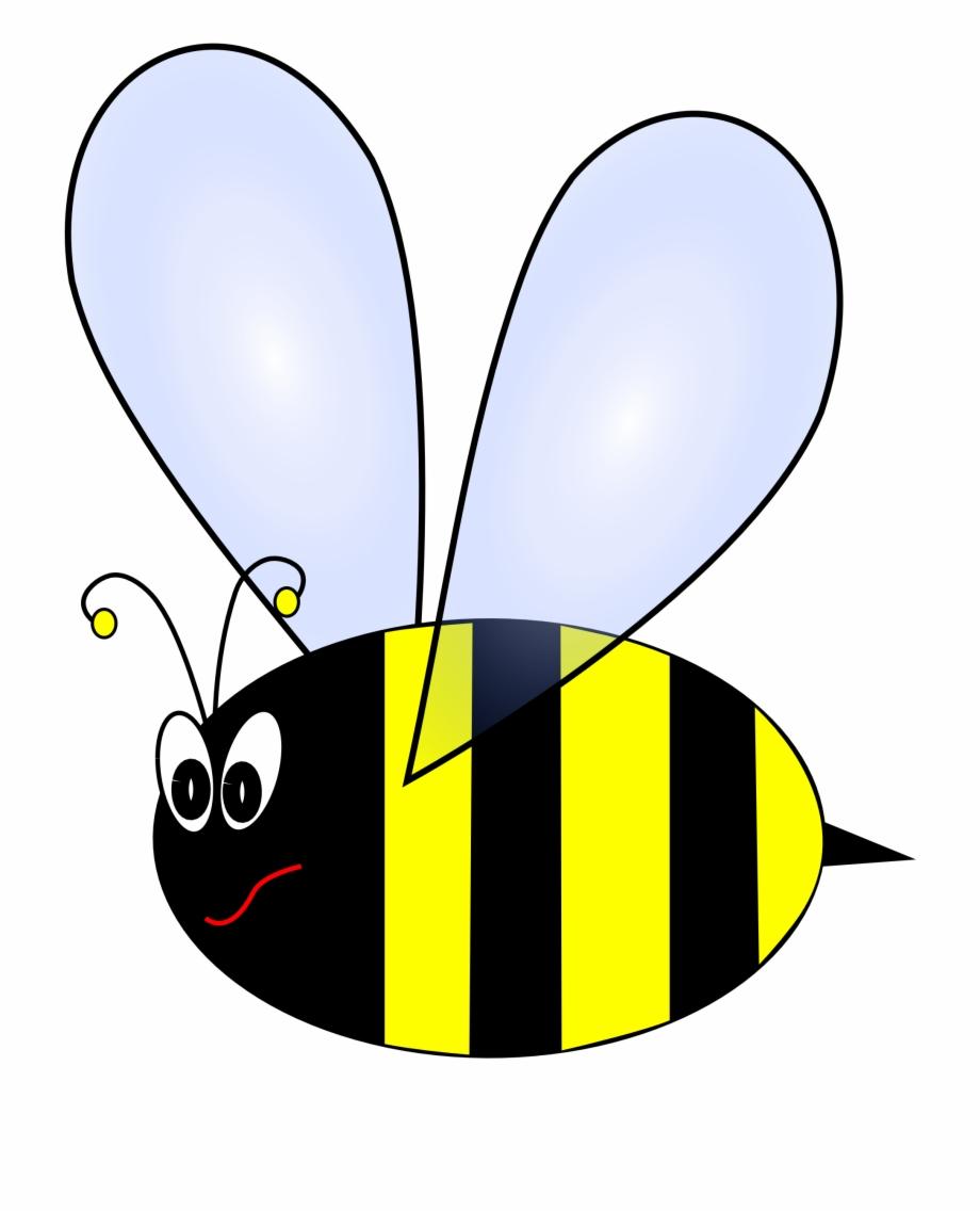 Honey bee beehive bumble. Bumblebee clipart bumblebee insect