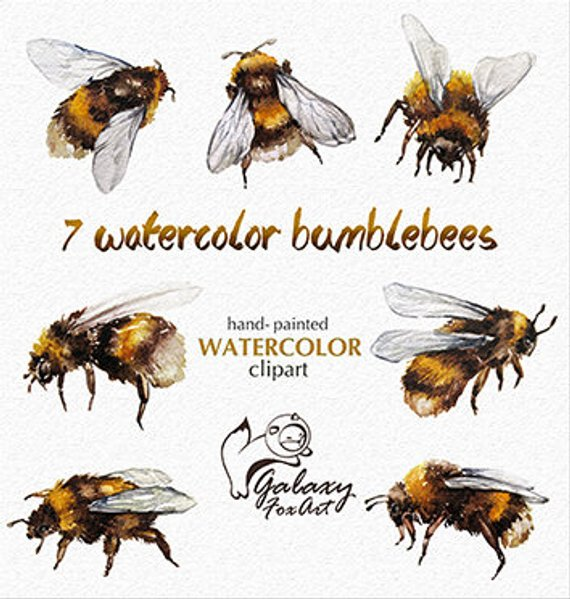 Bumblebee clipart bumblebee insect. Pin by etsy on