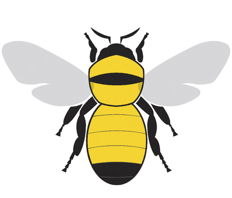 Waiting for the bees. Bumblebee clipart bumblebee insect