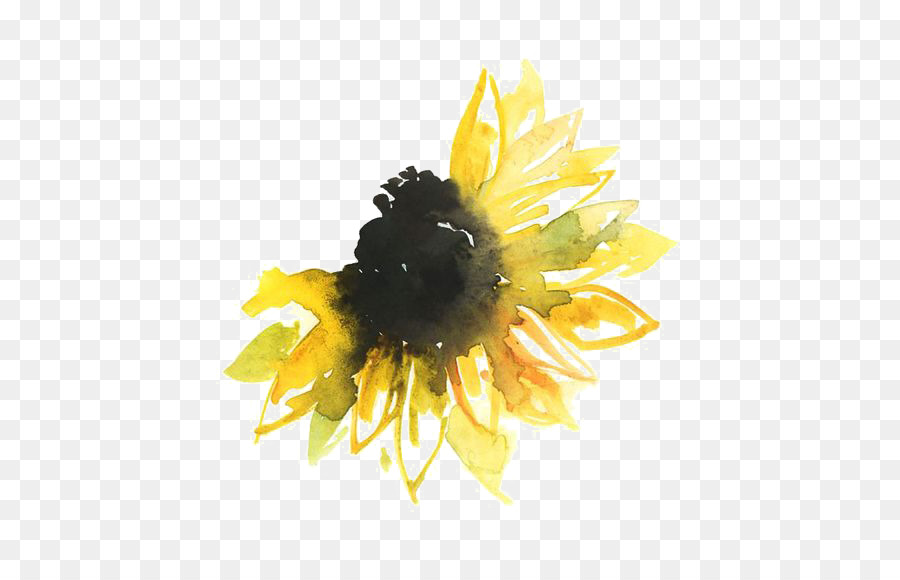 Watercolor painting tattoo paper. Bumblebee clipart sunflower