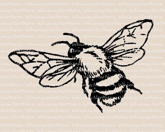 Bee clip art bumble. Bumblebee clipart vintage
