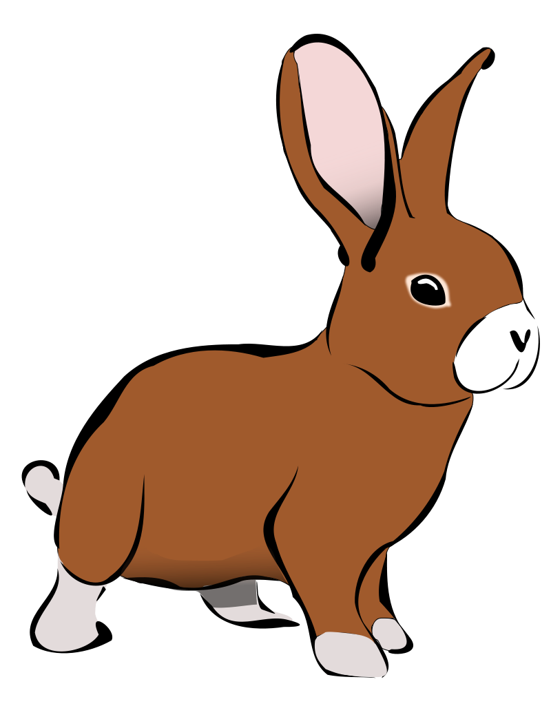 Square clipart kid. Cute bunny bunnies pinterest