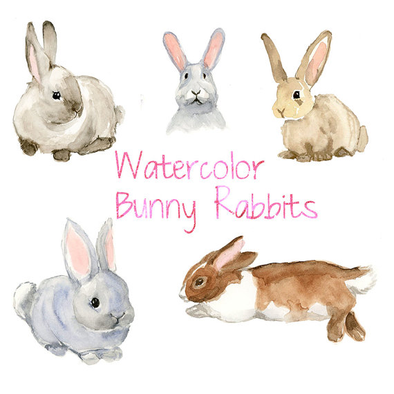 Watercolor bunnies rabbit clip. Bunny clipart forest