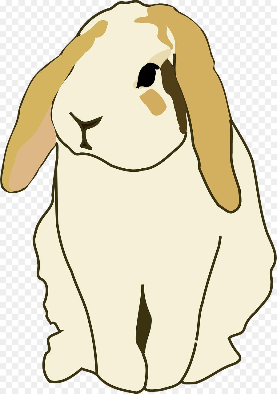 Holland easter thu ecf. Clipart bunny mini lop