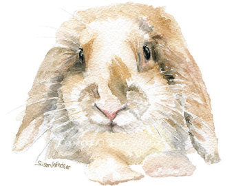 Bunnies clipart mini lop. Rabbit painting etsy watercolor