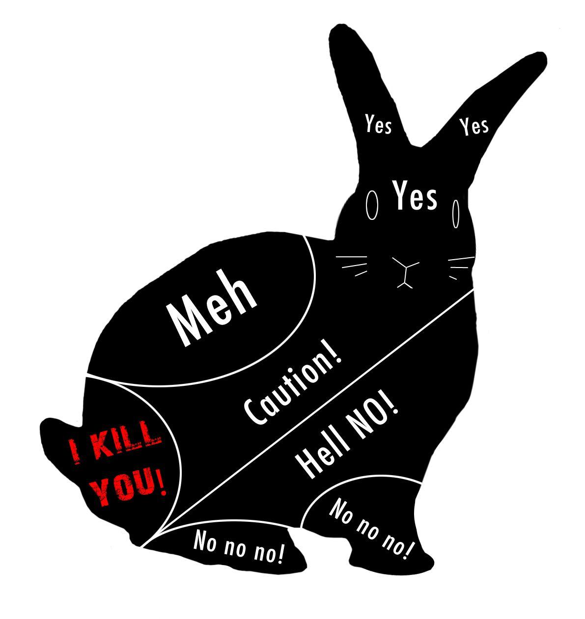 Where to stroke a. Bunnies clipart mini lop