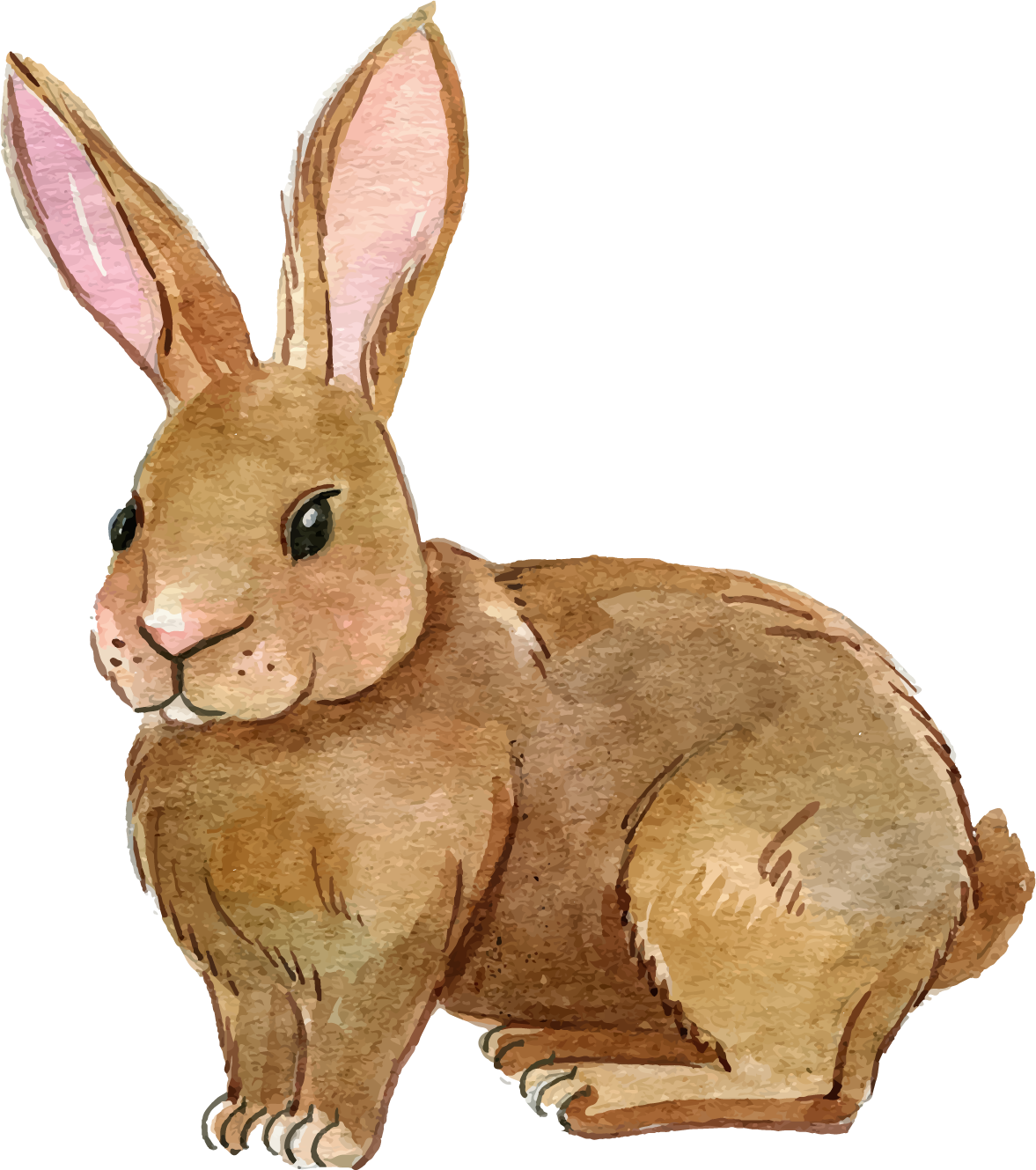 Clipart rabbit body, Clipart rabbit body Transparent FREE ...